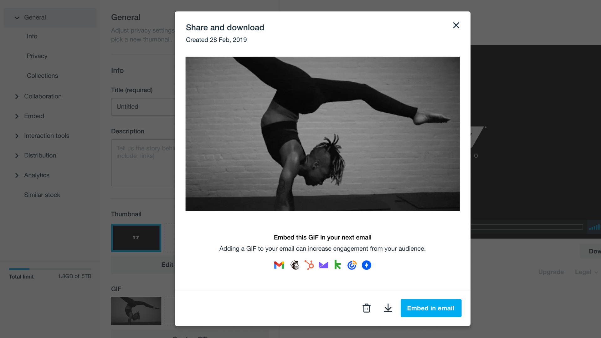 Vimeo GIF download and embed page